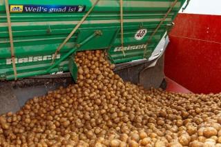 newsletter-potato-delivery-SPANGLER-Automation
